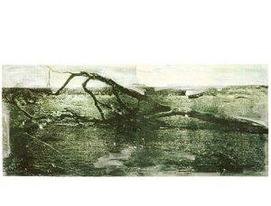 Behandelter Baum, 1998, lichtdruk, etsinkt, acryl, 153 x 70 cm