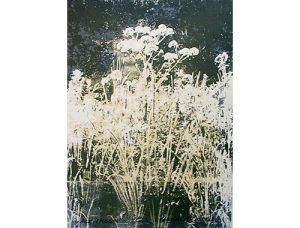 Alles stroomt, 1994, zeefdruk, 56 x 76 cm