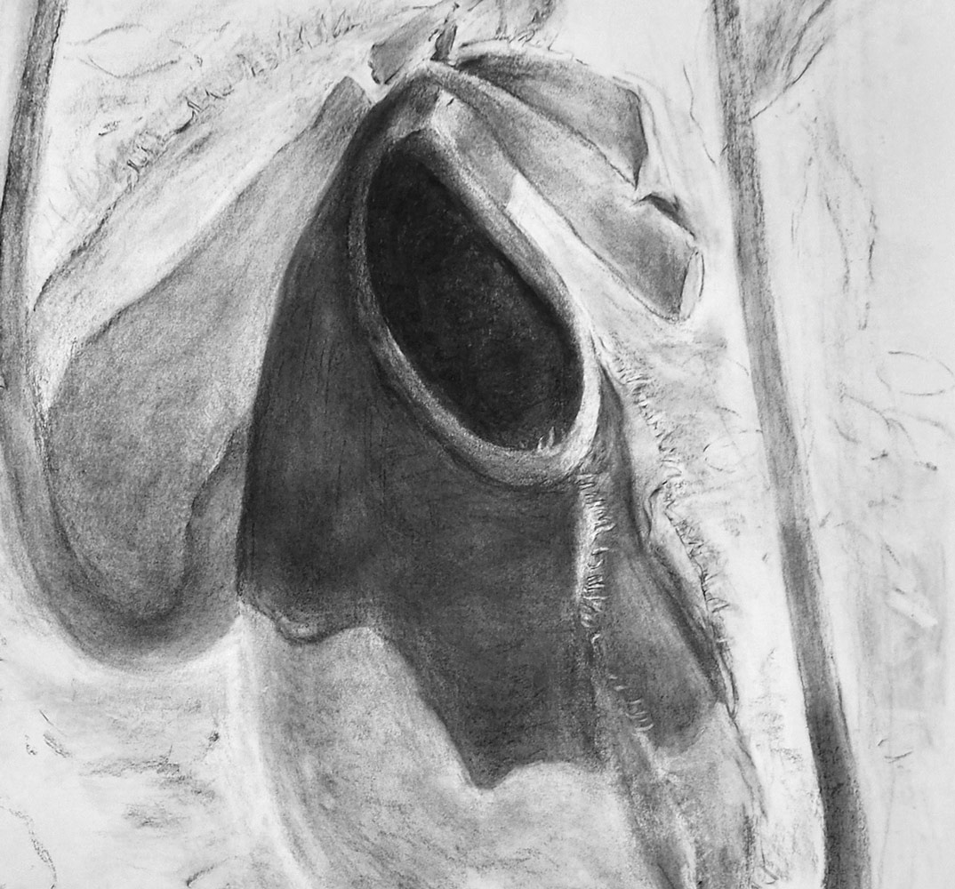 Buidel detail, charcoal