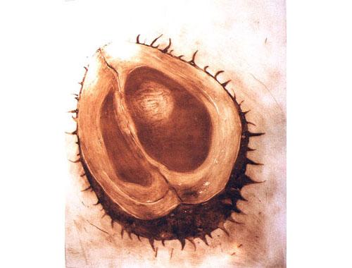 Follicle, 2002, edition, carborundum print, 80 x 94,5 cm