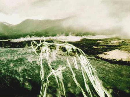Lycaon, 2004, inkjet print, silkscreen ink on paper mounted on canvas, 75 x 100 cm