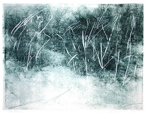 Scribbled landscape, 2005, transfer print, chalk on paper, 56 x 76 cm