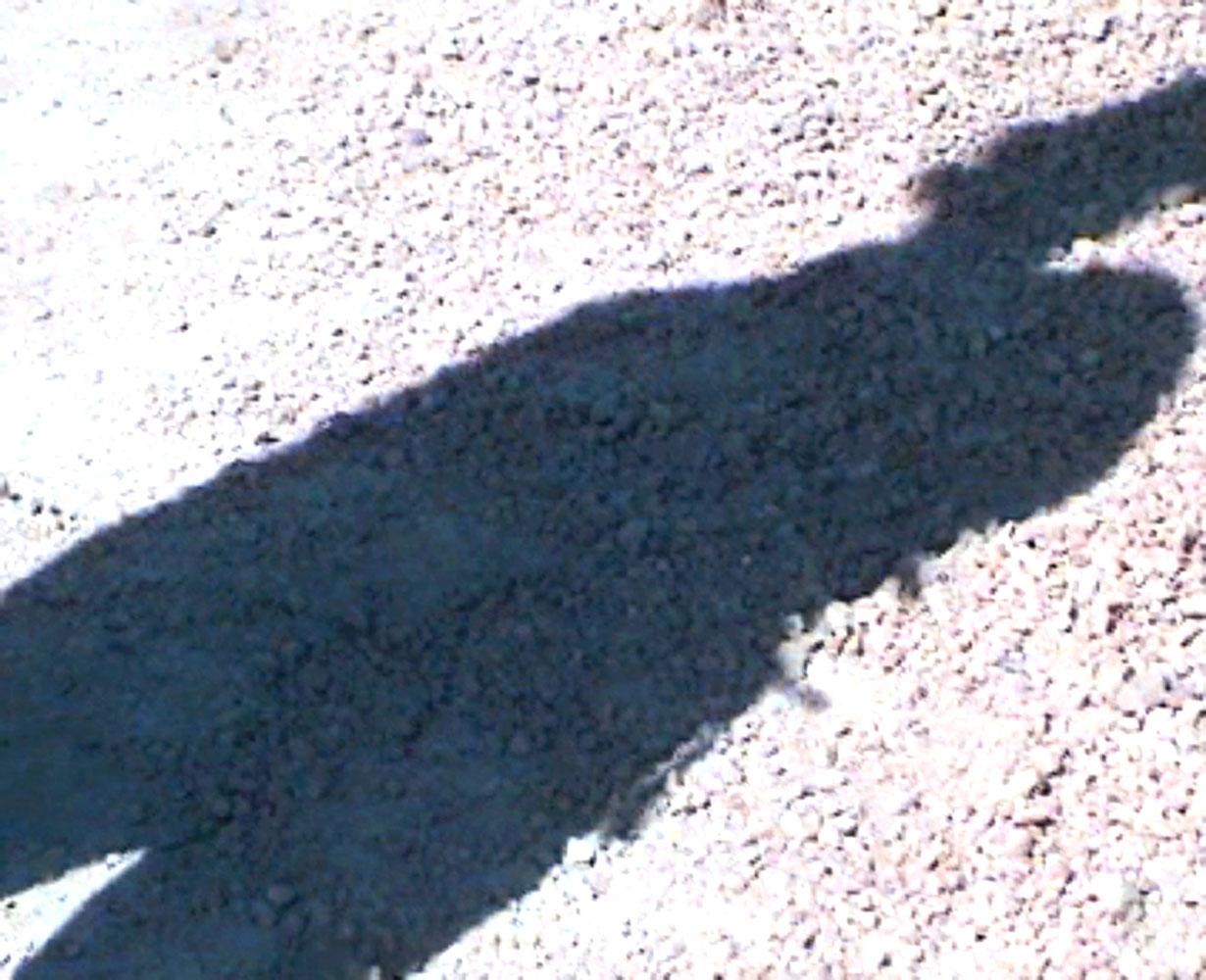 Shadow 5, 2013, digital print, 83 x 62 cm