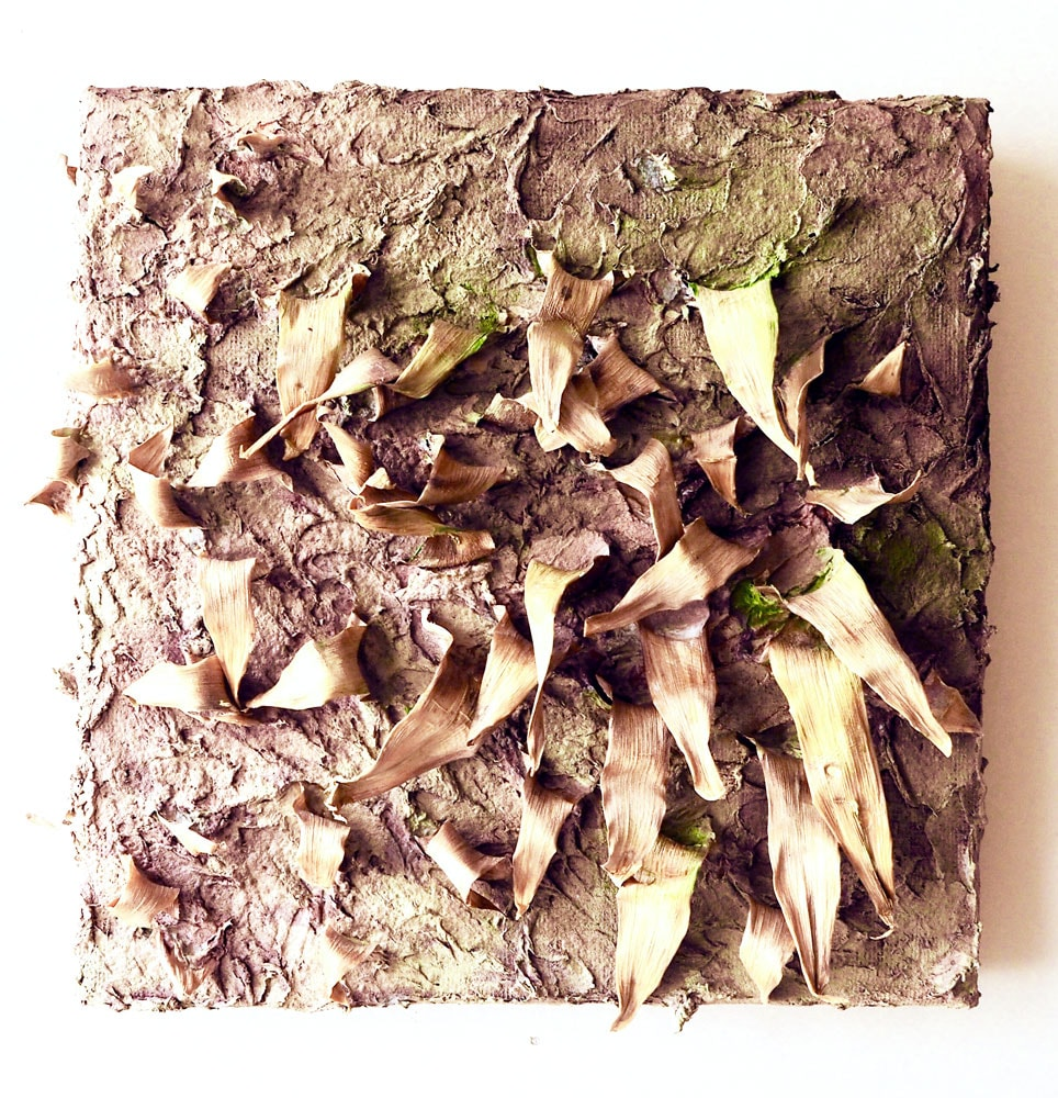 Withered, papier maché, clay with leaves on canvas, 30 x 30 x 7 cm
