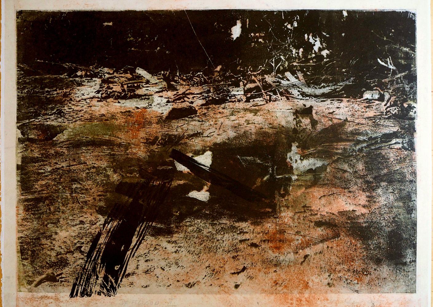 Driftwood II, 1998, mixed media, 107 x 79 cm