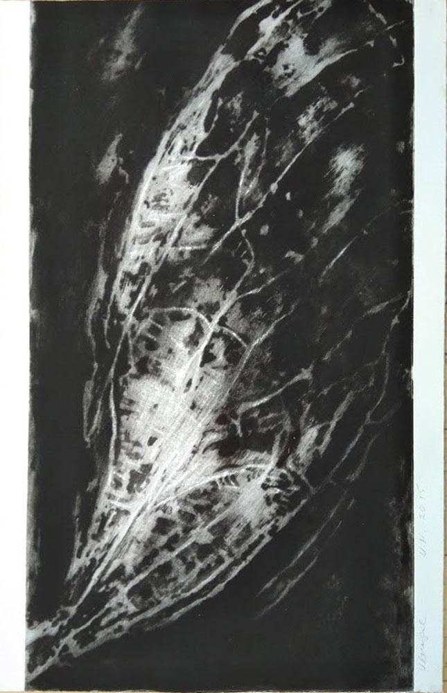 wing, 2015, carborundum print, 49 x 76 cm